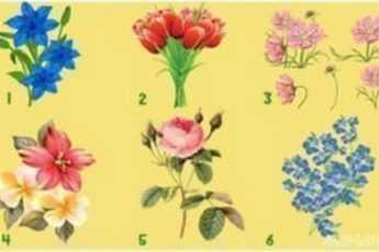 Тест Весна